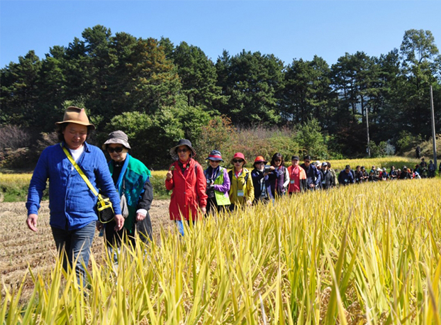 Ecological exploration of Daecheongho Lake with citizens